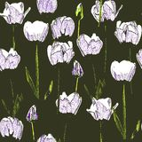 Naadloos patroon met tulpen, wijnoogst, grunge achtergrond Perfectioneer voor druk op stof, verpakkend document enz. royalty-vrije illustratie
