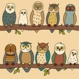 Naadloos patroon met uilen die op de takken zitten Stock Fotografie