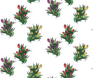 Naadloos patroon met verschillende bouquettes van tulpen Stock Afbeeldingen