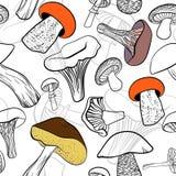 Naadloos patroon met verschillende hand getrokken paddestoelen in zwart-wit met kleurencontrasten Stock Afbeeldingen