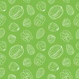 Naadloos patroon met verschillende noten, geheel en geschild Okkernoten, amandelen, hazelnoten Mengeling van noten vector illustratie
