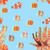 Naadloos patroon met vissen, clownfish, butterflyfishes watercolor vector illustratie
