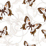 Naadloos patroon met vlinders Stock Fotografie