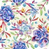Naadloos patroon met waterverf blauwe succulents Royalty-vrije Stock Foto's