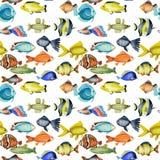 Naadloos patroon met waterverf oceanic tropische exotische vissen stock illustratie