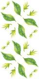 Naadloos patroon met waterverfbladeren Royalty-vrije Stock Afbeeldingen