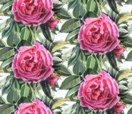 Naadloos patroon met waterverfbloemen De hond nam toe Royalty-vrije Stock Afbeelding