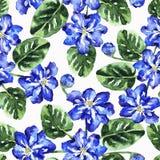 Naadloos patroon met waterverfbloemen en bladeren stock foto's