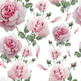 Naadloos patroon met waterverfbloemen Nam toe stock illustratie