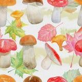 Naadloos patroon met waterverfpaddestoelen en dalingsbladeren Stock Foto
