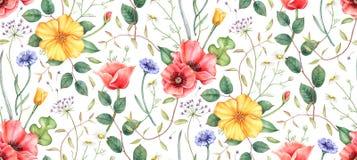 Naadloos patroon met wildflowers en kruiden Hand getrokken waterverfillustratie royalty-vrije illustratie