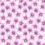 Naadloos patroon met wildflowers vector illustratie