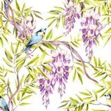 Naadloos patroon met wisteria De hand trekt waterverfillustratie Stock Foto's