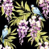 Naadloos patroon met wisteria De hand trekt waterverfillustratie Royalty-vrije Stock Afbeeldingen