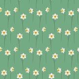 Naadloos patroon met witte gele narcissen op een groene achtergrond Stock Fotografie
