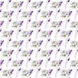 Naadloos patroon met Witte Pioenbloemen Stock Afbeeldingen