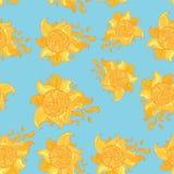 Naadloos patroon met zon Royalty-vrije Stock Foto