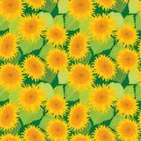 Naadloos patroon met zonnebloemen Zomer, aardbackgrou vector illustratie