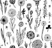 Naadloos patroon met zwarte krabbelbloemen op een witte achtergrond Hygge, bohostijl Vector illustratie Het element van het ontwe royalty-vrije stock afbeelding