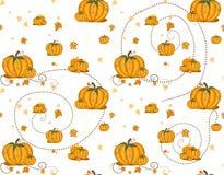 Naadloos patroon - Pompoenen Stock Afbeelding
