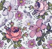Naadloos patroon Realistische geïsoleerde bloemen Uitstekende achtergrond De kamille nam hibiscusmalve toe behang Tekeningsgravur Stock Afbeeldingen