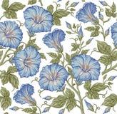 Naadloos patroon Realistische geïsoleerde bloemen Uitstekende barokke achtergrond petunia behang Tekeningsgravure Vector Royalty-vrije Stock Afbeelding