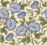 Naadloos patroon Realistische geïsoleerde bloemen Uitstekende barokke achtergrond petunia behang Tekeningsgravure Vector Royalty-vrije Stock Afbeeldingen