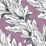 Naadloos patroon Spathiphyllum Hand getrokken grafiek stock illustratie