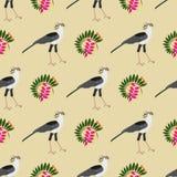 Naadloos patroon Tropische bladen, exotische Afrikaanse vogels en stroom Royalty-vrije Stock Foto