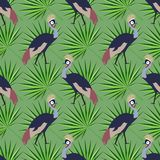 Naadloos patroon Tropische bladen, exotische Afrikaanse vogels en stroom Stock Afbeelding