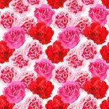 Naadloos patroon van anjersbloemen Royalty-vrije Stock Afbeeldingen
