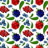 Naadloos patroon van bessen royalty-vrije stock afbeeldingen