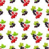 Naadloos patroon van clusters van bessen van rode aalbes en zwarte smrodina op een tak in lage polystijl op een witte achtergrond stock illustratie