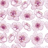 Naadloos patroon van de lentebloemen van roze kers, sakura op een transparante achtergrond Het idee voor het ontwerp van kaarten, royalty-vrije illustratie