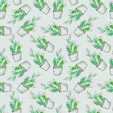 Naadloos patroon van een cactus royalty-vrije illustratie