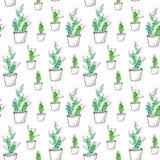 Naadloos patroon van een cactus vector illustratie
