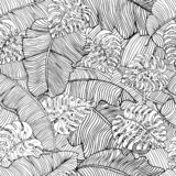 Naadloos patroon van exotische witte banaanbladeren en monsterabladeren met zwart overzicht Decoratief beeld met tropisch geblade royalty-vrije illustratie