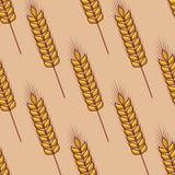 Naadloos patroon van graangewassenoren Stock Fotografie