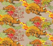 Naadloos patroon van kameleon Stock Afbeelding