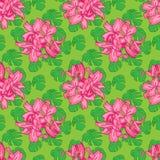 Naadloos patroon van monsterabladeren met roze bloemen Vector illustratie stock illustratie