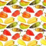 Naadloos patroon van multicolored peper Stock Afbeeldingen