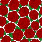 Naadloos patroon van rode rozen op witte achtergrond Royalty-vrije Stock Afbeelding