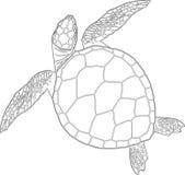 Naadloos patroon van schildpadden Royalty-vrije Stock Foto's