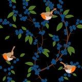 Naadloos patroon van Sleedoornbessen en de vogels van Robin Stock Foto