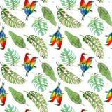 Naadloos patroon van tropische palmbladen en kleurrijke vogels op witte achtergrond De illustratie van de waterverf stock illustratie