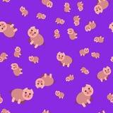 Naadloos patroon van varken vector illustratie