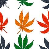 Naadloos patroon van verschillend bladmarihuana Royalty-vrije Stock Afbeeldingen