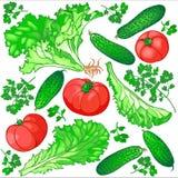 Naadloos patroon van verse groenten voor de salade van komkommers, stock fotografie
