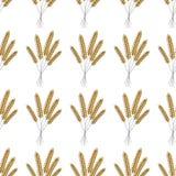Naadloos patroon Vector illustratie Ontwerp van de van de achtergrond landbouwtarwe het vectorpictogramillustratie gerst stock illustratie