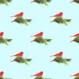 Naadloos patroon voor het ontwerp van de de wintervakantie Royalty-vrije Stock Foto